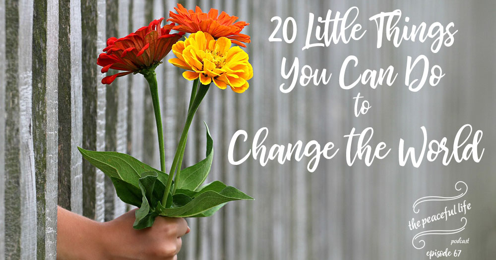20 Little Things You Can Do to Change the World - Hand with Flowers